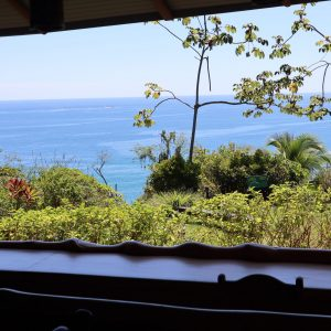 view of ocean and trees from balcony