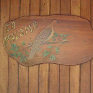 la paloma sign with bird